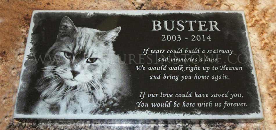 Cat Memorial Garden Stones Pictures in stone everlasting laser engraved gifts and memorials workwithnaturefo
